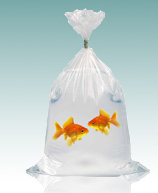 Fish Poly Bags (Leak-Proof)